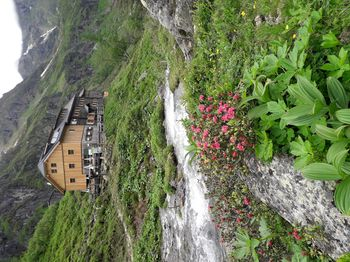 Gollinghütte